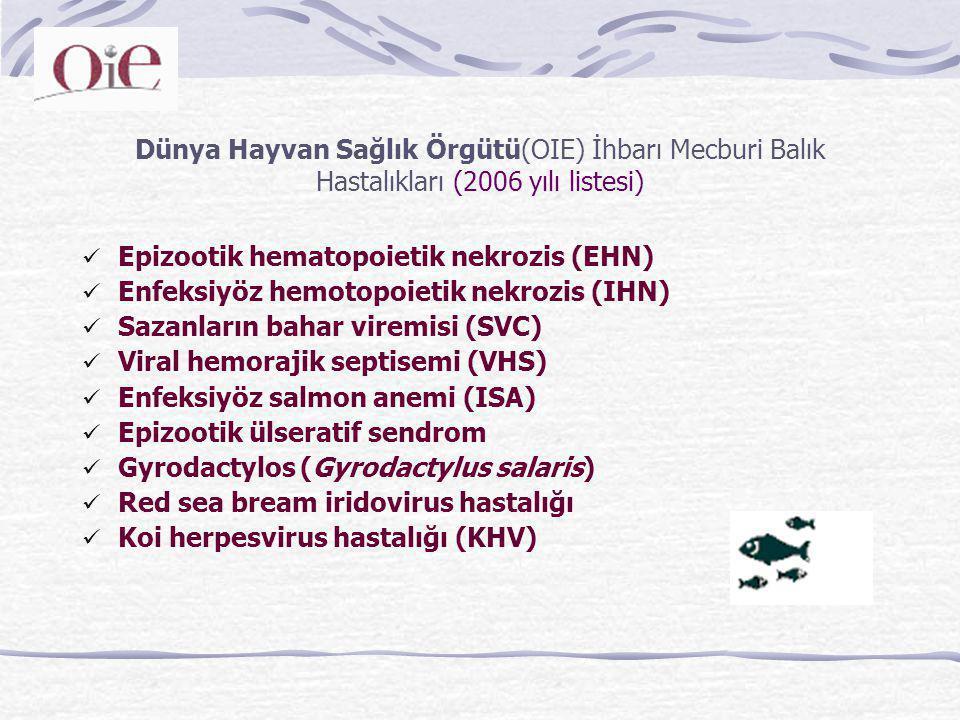 Dünya Hayvan Sağlık Örgütü(OIE) İhbarı Mecburi Balık Hastalıkları (2006 yılı listesi) Epizootik hematopoietik nekrozis (EHN) Enfeksiyöz hemotopoietik