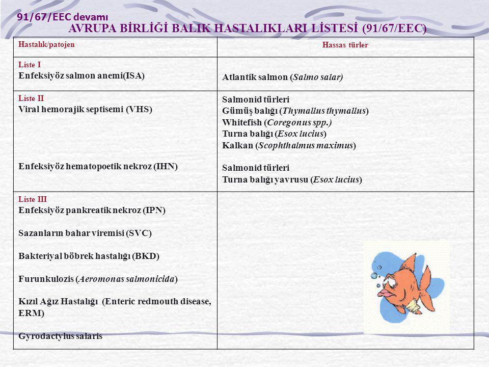 AVRUPA BİRLİĞİ BALIK HASTALIKLARI LİSTESİ (91/67/EEC) Hastalık/patojenHassas türler Liste I Enfeksiyöz salmon anemi(ISA) Atlantik salmon (Salmo salar)