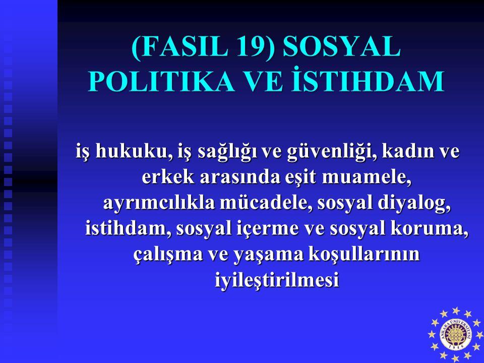 FASIL 19) SOSYAL POLITIKA VE İSTIHDAM (FASIL 19) SOSYAL POLITIKA VE İSTIHDAM iş hukuku, iş sağlığı ve güvenliği, kadın ve erkek arasında eşit muamele,