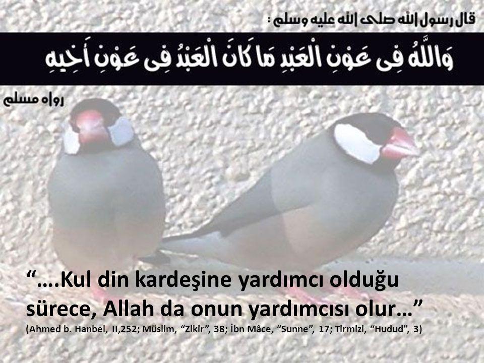 """""""….Kul din kardeşine yardımcı olduğu sürece, Allah da onun yardımcısı olur…"""" (Ahmed b. Hanbel, II,252; Müslim, """"Zikir"""", 38; İbn Mâce, """"Sunne"""", 17; Tir"""