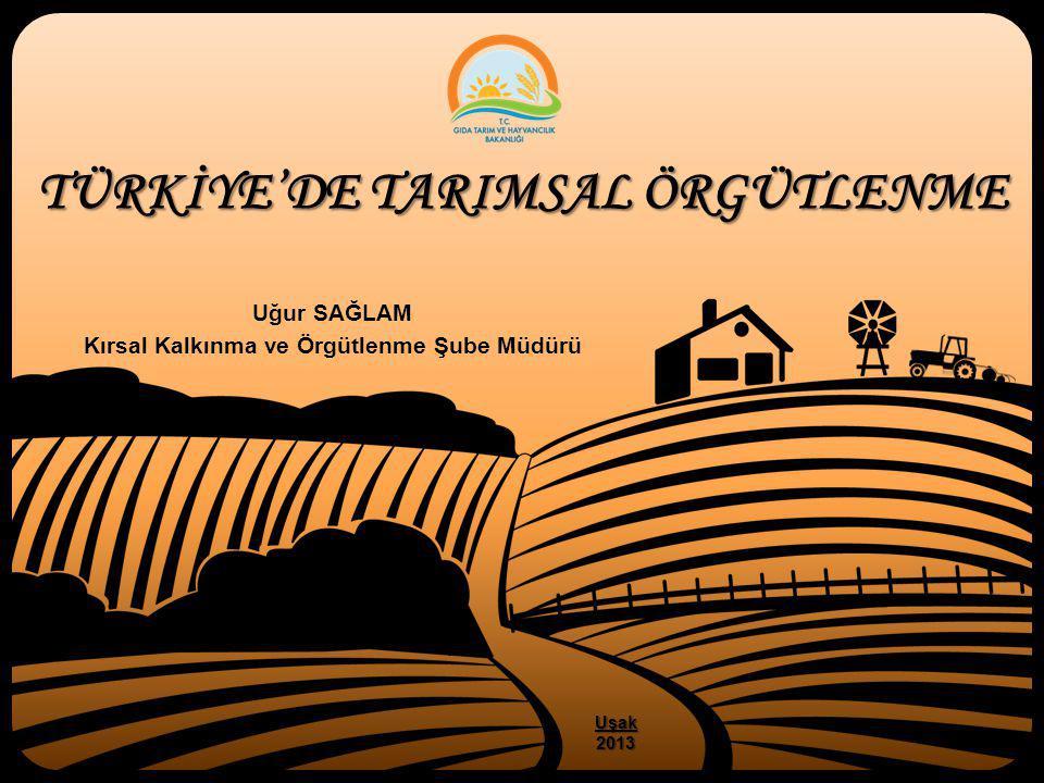 TÜRKİYE'DE TARIMSAL ÖRGÜTLENME Uğur SAĞLAM Kırsal Kalkınma ve Örgütlenme Şube Müdürü Uşak2013