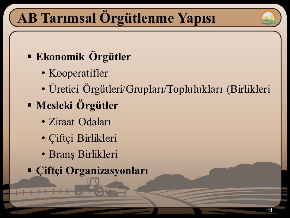AB Tarımsal Örgütlenme Yapısı  Ekonomik Örgütler Kooperatifler Üretici Örgütleri/Grupları/Toplulukları (Birlikleri  Mesleki Örgütler Ziraat Odaları Çiftçi Birlikleri Branş Birlikleri  Çiftçi Organizasyonları 11