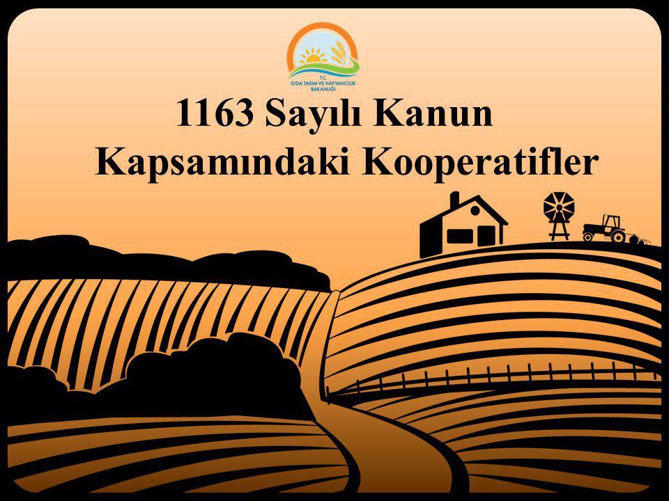 1163 Sayılı Kanun Kapsamındaki Kooperatifler