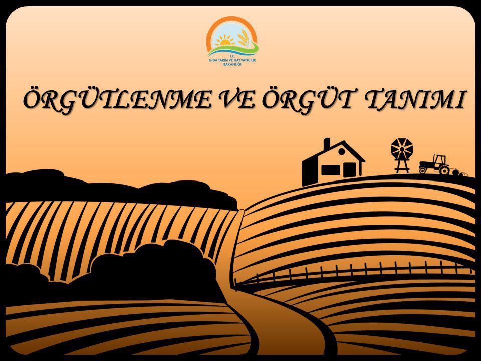 Üretici Örgütleri/Grupları/Toplulukları (Birlikleri) Üretici örgütleri adı verilen örgütlenme biçiminin, AB üyesi ülkelerin tarım ürünlerinin üretim ve ticaretinde genel rekabet kurallarına uyum konusunda aldıkları kararlar sonrasına dayanmaktadır.