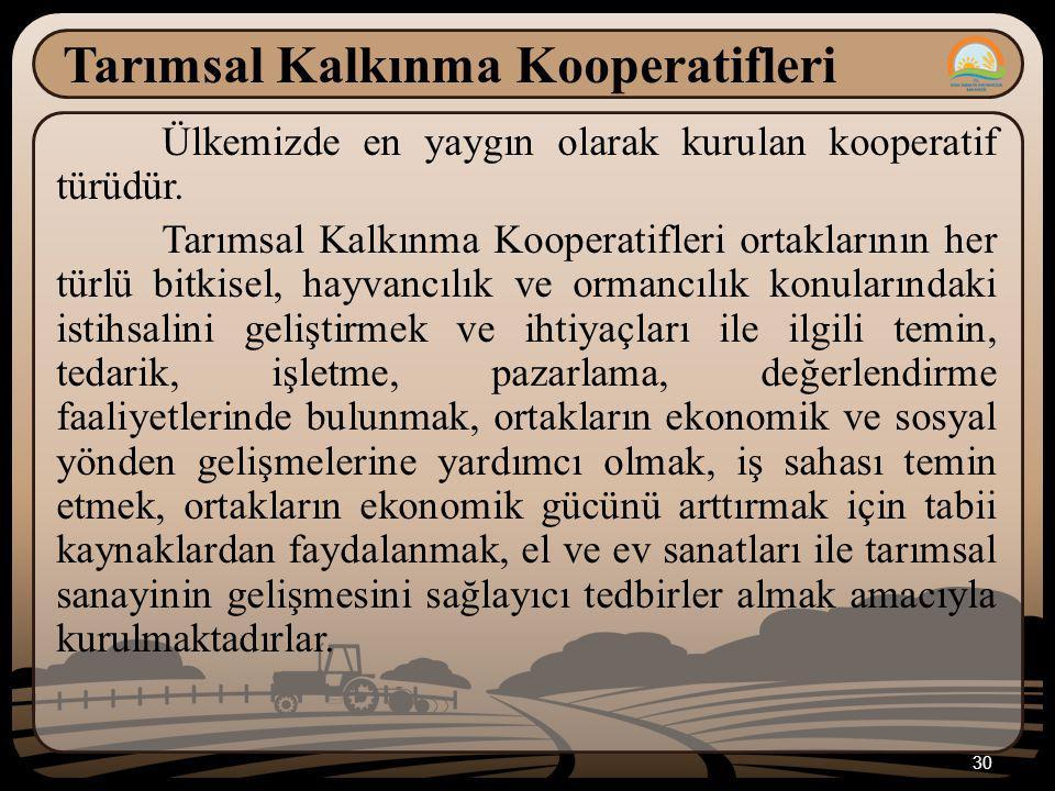 30 Tarımsal Kalkınma Kooperatifleri Ülkemizde en yaygın olarak kurulan kooperatif türüdür. Tarımsal Kalkınma Kooperatifleri ortaklarının her türlü bit