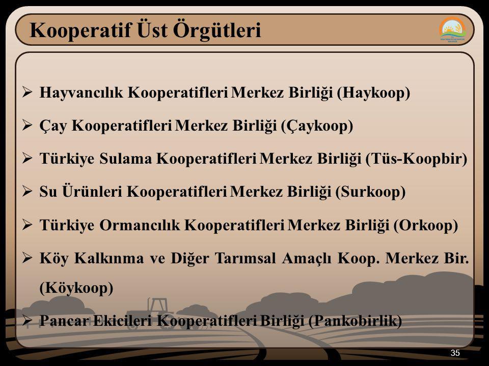 35 Kooperatif Üst Örgütleri  Hayvancılık Kooperatifleri Merkez Birliği (Haykoop)  Çay Kooperatifleri Merkez Birliği (Çaykoop)  Türkiye Sulama Kooperatifleri Merkez Birliği (Tüs-Koopbir)  Su Ürünleri Kooperatifleri Merkez Birliği (Surkoop)  Türkiye Ormancılık Kooperatifleri Merkez Birliği (Orkoop)  Köy Kalkınma ve Diğer Tarımsal Amaçlı Koop.