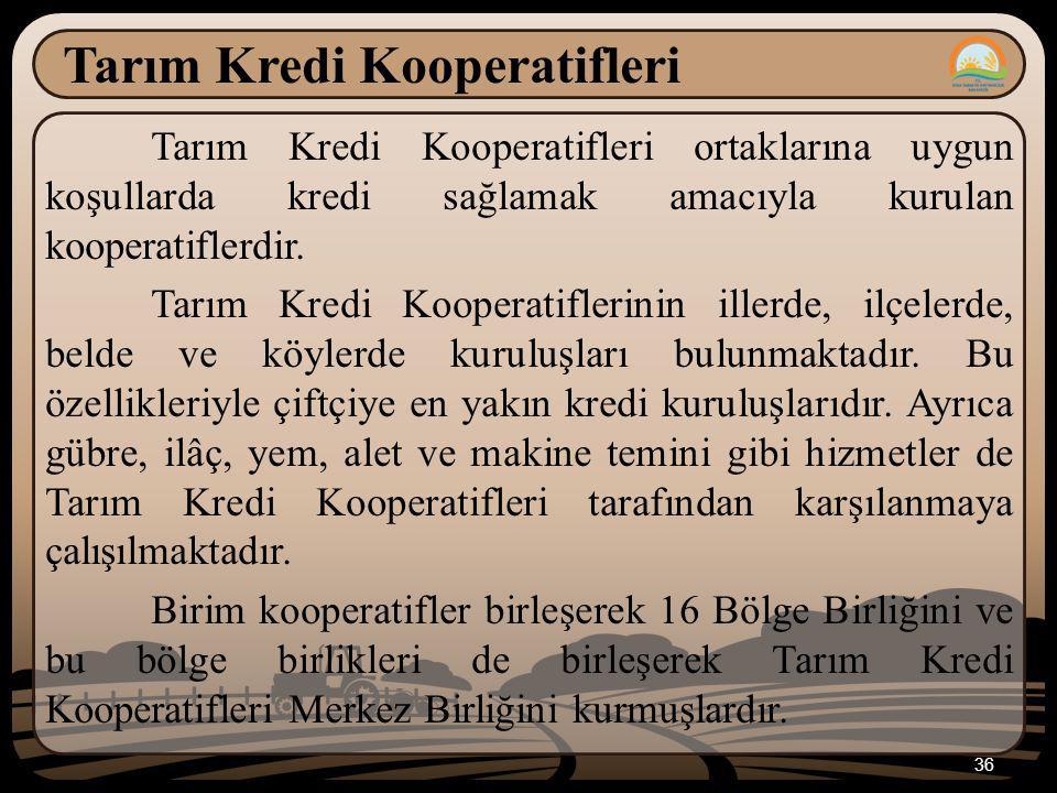 36 Tarım Kredi Kooperatifleri Tarım Kredi Kooperatifleri ortaklarına uygun koşullarda kredi sağlamak amacıyla kurulan kooperatiflerdir.