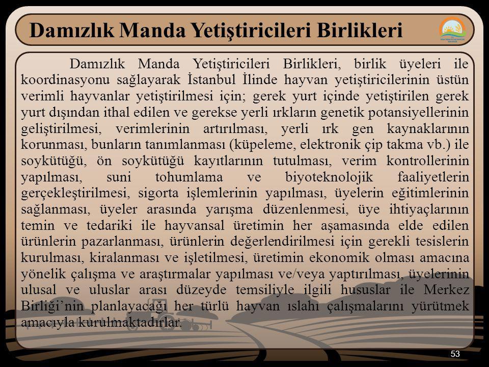 53 Damızlık Manda Yetiştiricileri Birlikleri Damızlık Manda Yetiştiricileri Birlikleri, birlik üyeleri ile koordinasyonu sağlayarak İstanbul İlinde hayvan yetiştiricilerinin üstün verimli hayvanlar yetiştirilmesi için; gerek yurt içinde yetiştirilen gerek yurt dışından ithal edilen ve gerekse yerli ırkların genetik potansiyellerinin geliştirilmesi, verimlerinin artırılması, yerli ırk gen kaynaklarının korunması, bunların tanımlanması (küpeleme, elektronik çip takma vb.) ile soykütüğü, ön soykütüğü kayıtlarının tutulması, verim kontrollerinin yapılması, suni tohumlama ve biyoteknolojik faaliyetlerin gerçekleştirilmesi, sigorta işlemlerinin yapılması, üyelerin eğitimlerinin sağlanması, üyeler arasında yarışma düzenlenmesi, üye ihtiyaçlarının temin ve tedariki ile hayvansal üretimin her aşamasında elde edilen ürünlerin pazarlanması, ürünlerin değerlendirilmesi için gerekli tesislerin kurulması, kiralanması ve işletilmesi, üretimin ekonomik olması amacına yönelik çalışma ve araştırmalar yapılması ve/veya yaptırılması, üyelerinin ulusal ve uluslar arası düzeyde temsiliyle ilgili hususlar ile Merkez Birliği'nin planlayacağı her türlü hayvan ıslahı çalışmalarını yürütmek amacıyla kurulmaktadırlar.