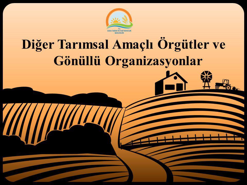 Diğer Tarımsal Amaçlı Örgütler ve Gönüllü Organizasyonlar