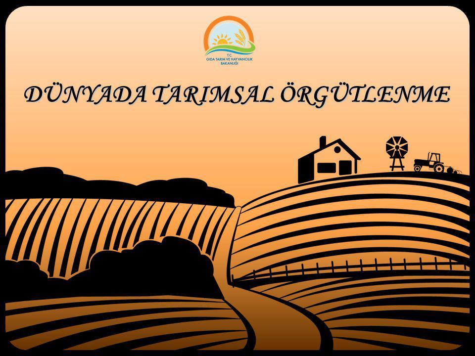Dünyada tarım alanında kamu örgütlenmesi ve sivil örgütlenme ayrımı yapılabilir.