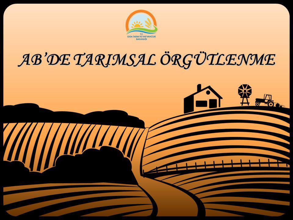 40 Tarımsal Amaçlı Birlikler  Hizmet Birlikleri  Sulama Birlikleri  Köylere Hizmet Götürme Birlikleri  Islah Amaçlı Birlikler  Damızlık Sığır Yetiştiricileri Birliği  Damızlık Koyun-Keçi Yetiştiricileri Birliği  Damızlık Tavuk Yetiştiricileri Birliği  Damızlık Manda Yetiştiricileri Birliği  Türkiye Arı Yetiştiricileri Birlikleri  Üretici Birlikleri