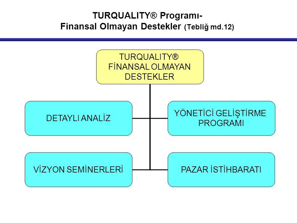 TURQUALITY® FİNANSAL OLMAYAN DESTEKLER DETAYLI ANALİZ YÖNETİCİ GELİŞTİRME PROGRAMI VİZYON SEMİNERLERİPAZAR İSTİHBARATI TURQUALITY® Programı- Finansal