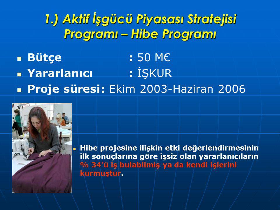 1.) Aktif İşgücü Piyasası Stratejisi Programı – Hibe Programı Bütçe : 50 M€ Yararlanıcı : İŞKUR Proje süresi: Ekim 2003-Haziran 2006 Hibe projesine ilişkin etki değerlendirmesinin ilk sonuçlarına göre işsiz olan yararlanıcıların % 34'ü iş bulabilmiş ya da kendi işlerini kurmuştur.