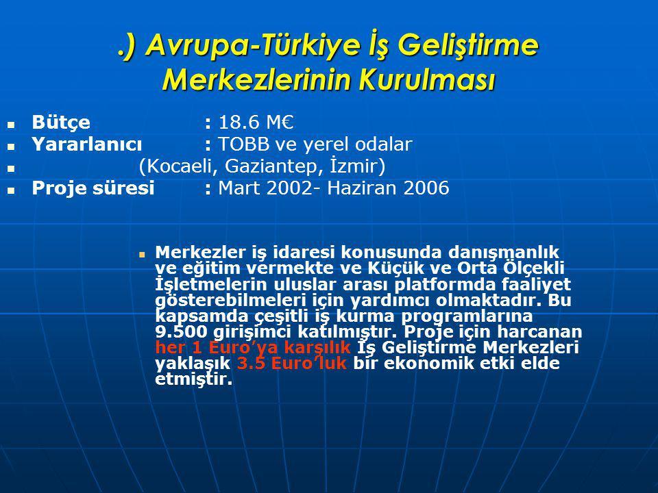 .) Avrupa-Türkiye İş Geliştirme Merkezlerinin Kurulması Bütçe : 18.6 M€ Yararlanıcı : TOBB ve yerel odalar (Kocaeli, Gaziantep, İzmir) Proje süresi: Mart 2002- Haziran 2006 Merkezler iş idaresi konusunda danışmanlık ve eğitim vermekte ve Küçük ve Orta Ölçekli İşletmelerin uluslar arası platformda faaliyet gösterebilmeleri için yardımcı olmaktadır.