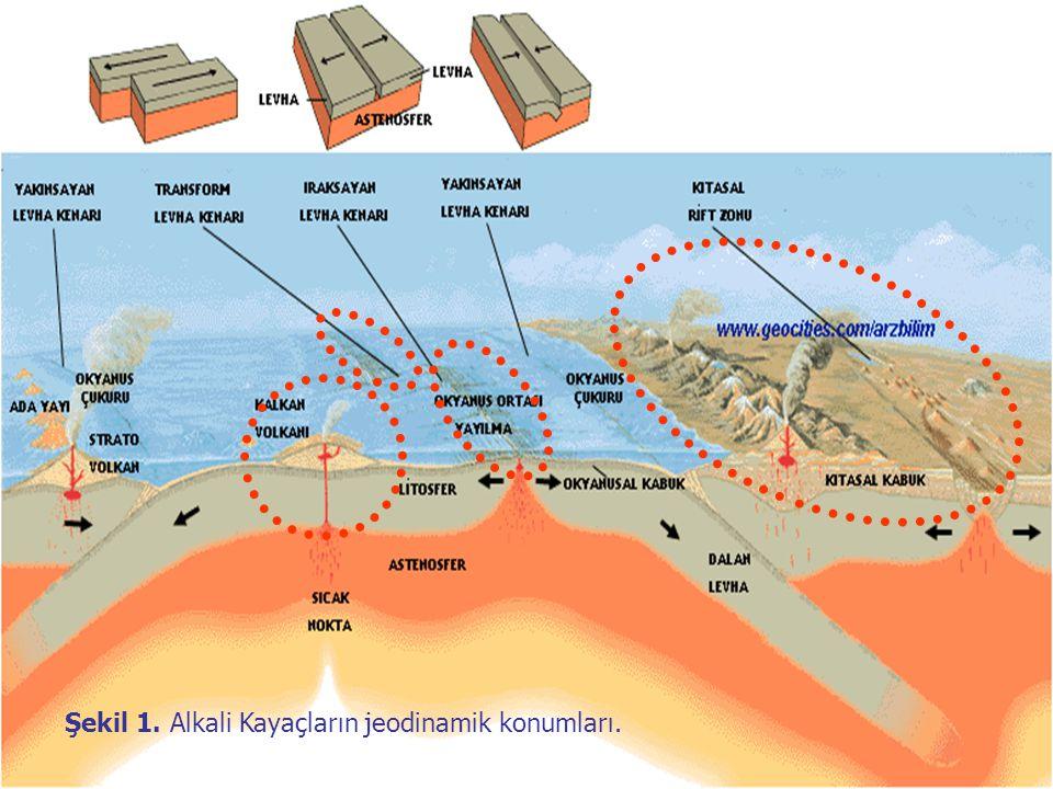 APF Üçgenindeki Alkali Kayaçlar Açık renkli bileşenler olarak başlıca alkali feldispat ve plajiyoklazın yanısıra feldispatoyid grubu mineraller içeren, asla serbest kuvars içermeyen ve bu nedenle jeokimyasal bileşim olarak silis bakımından tüketilmiş alkalin (ALKUS) kayaç olarak tanımlanan bu kayaçlar, APF üçgen diyagramında, başlıca foid içeren gabro/diyorit – foid içeren monzogabro / monzodiyorit – foid içeren monzonit – foid içeren siyenit - foid içeren AF siyenit – foid siyenit topluluğundan oluşan 9 nolu trend ile foid içeren monzogabro / monzodiyorit – foid monzogabro / monzodiyorit topluluğundan oluşan 10 nolu trendler olarak (Şekil ) gözlenirler) (Lameyre ve Bowden, 1982).