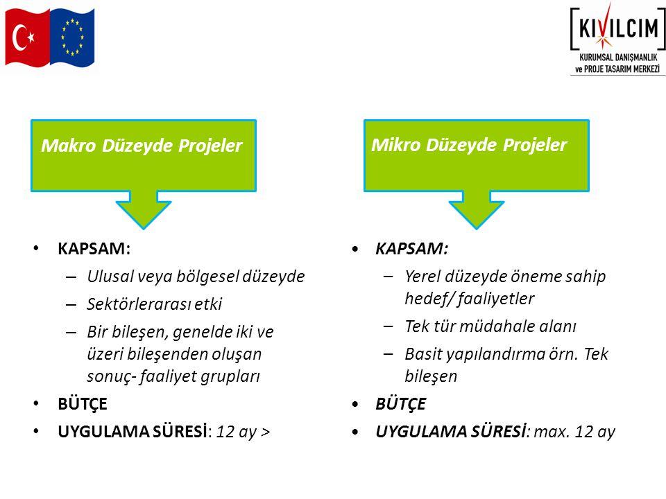MAKRO PROJE Makro Proje Bütçesi HİBE PROGRAMI Hibe Programının Hedef Kitlesindeki Kuruluşlar 2002-2011 döneminde 50 Hibe Programı uygulanmıştır...