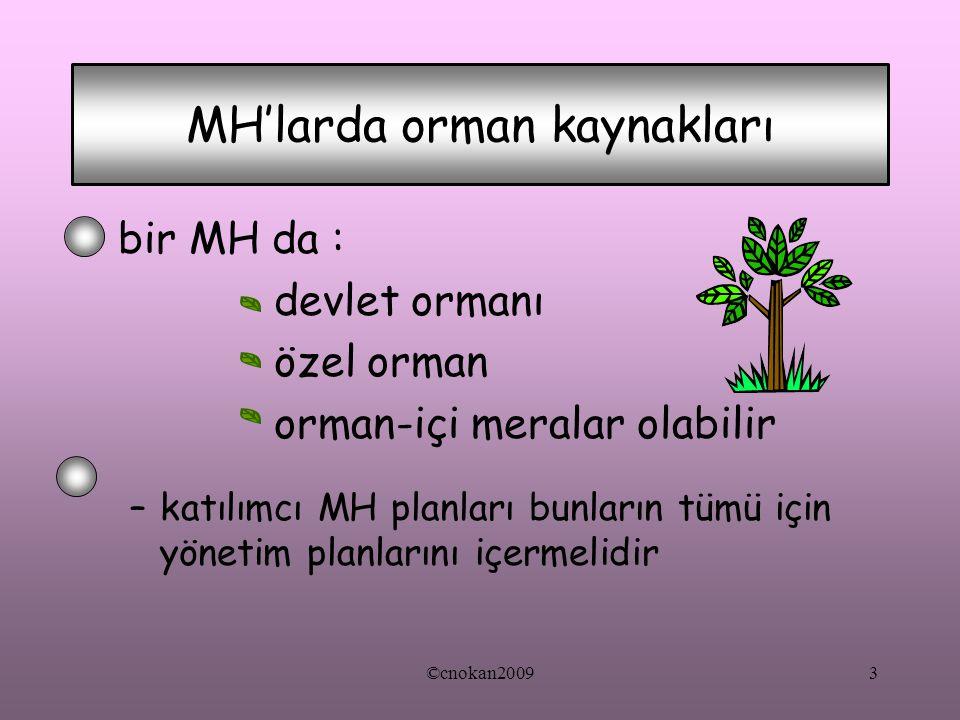 MH'larda orman kaynakları bir MH da : devlet ormanı özel orman orman-içi meralar olabilir –katılımcı MH planları bunların tümü için yönetim planlarını
