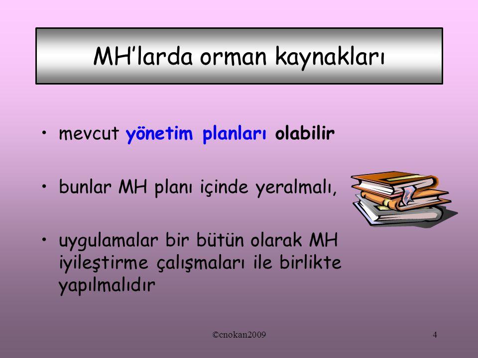 mevcut yönetim planları olabilir bunlar MH planı içinde yeralmalı, uygulamalar bir bütün olarak MH iyileştirme çalışmaları ile birlikte yapılmalıdır M