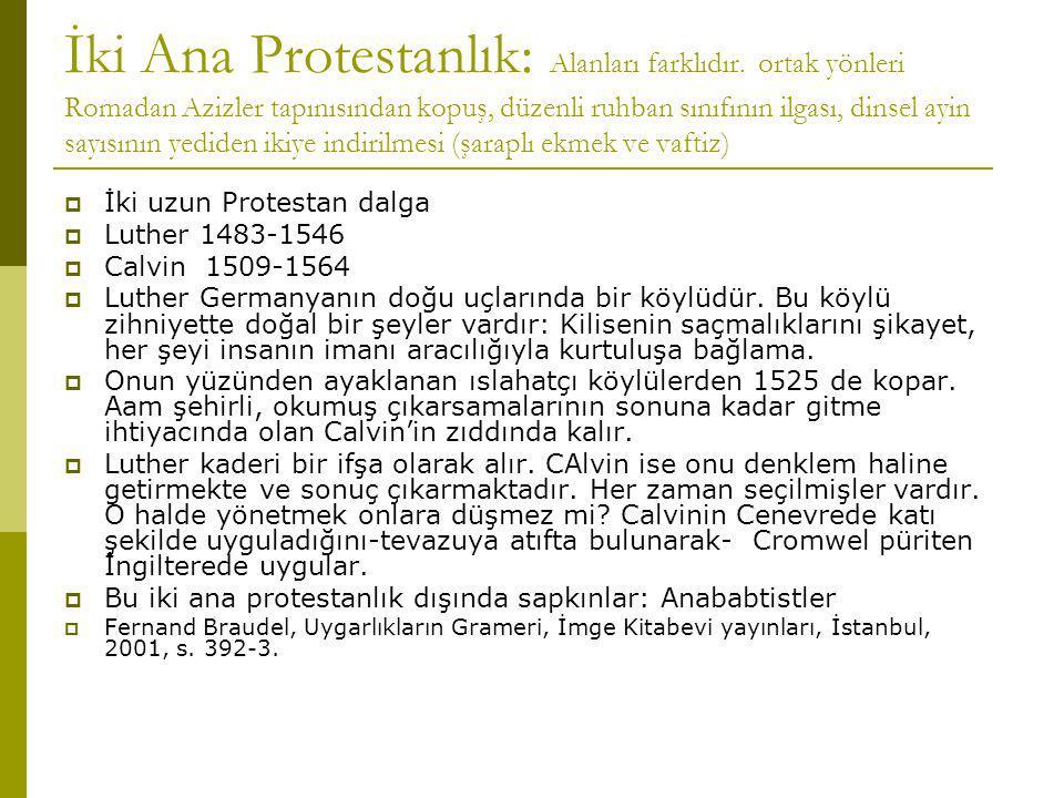 İki Ana Protestanlık: Alanları farklıdır.