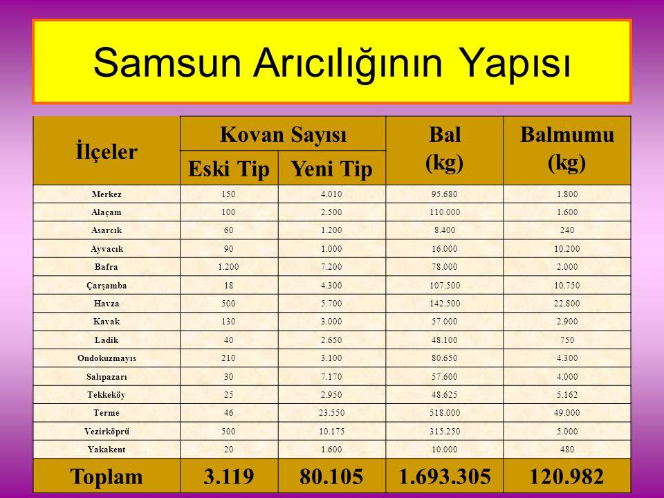 Samsun Arıcılığının Yapısı İlçeler Kovan SayısıBal (kg) Balmumu (kg) Eski TipYeni Tip Merkez1504.01095.6801.800 Alaçam1002.500110.0001.600 Asarcık601.