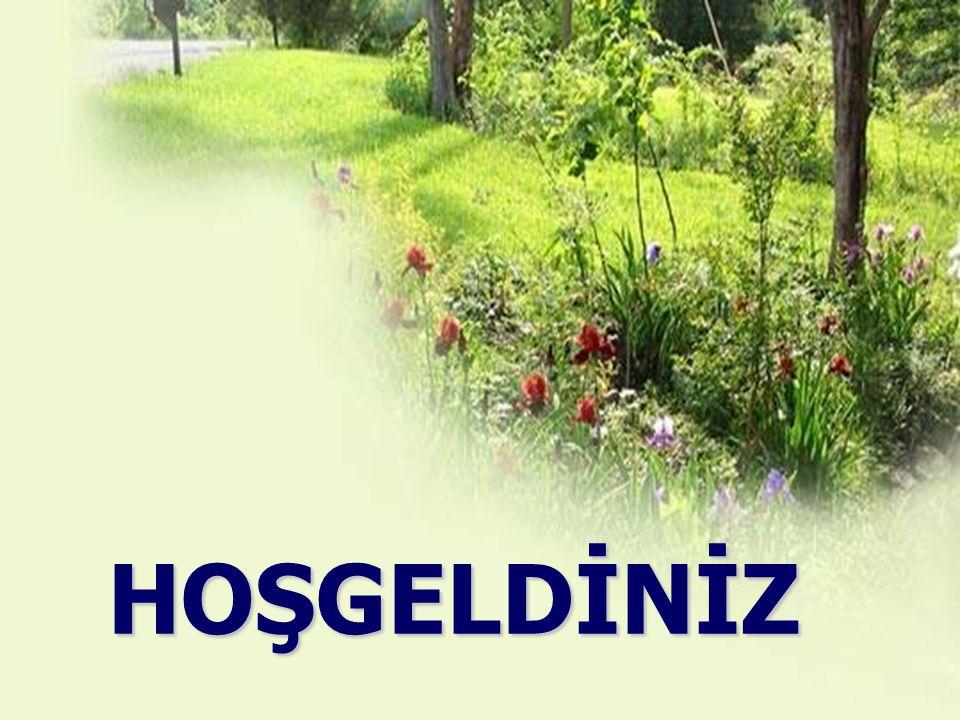 Prof.Dr. Mehmet Zeki AYDIN ÇALIŞMALARI 25 adet bilimsel makale, 10 yabancı dilde makale, 19 sempozyum bildiri ve tartışması ile bir çok popüler dergil