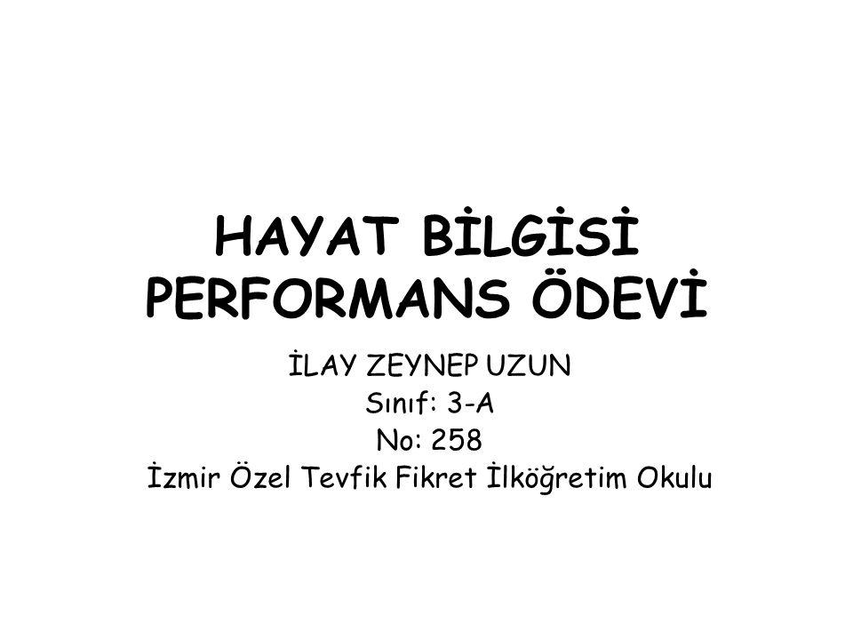 HAYAT BİLGİSİ PERFORMANS ÖDEVİ İLAY ZEYNEP UZUN Sınıf: 3-A No: 258 İzmir Özel Tevfik Fikret İlköğretim Okulu