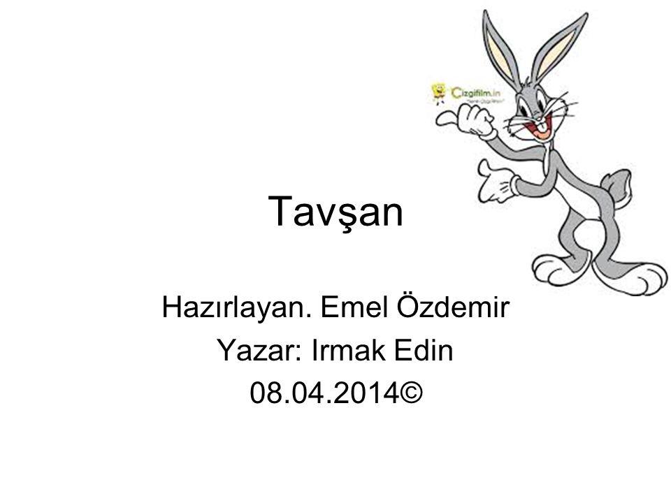 Tavşan Hazırlayan. Emel Özdemir Yazar: Irmak Edin 08.04.2014©
