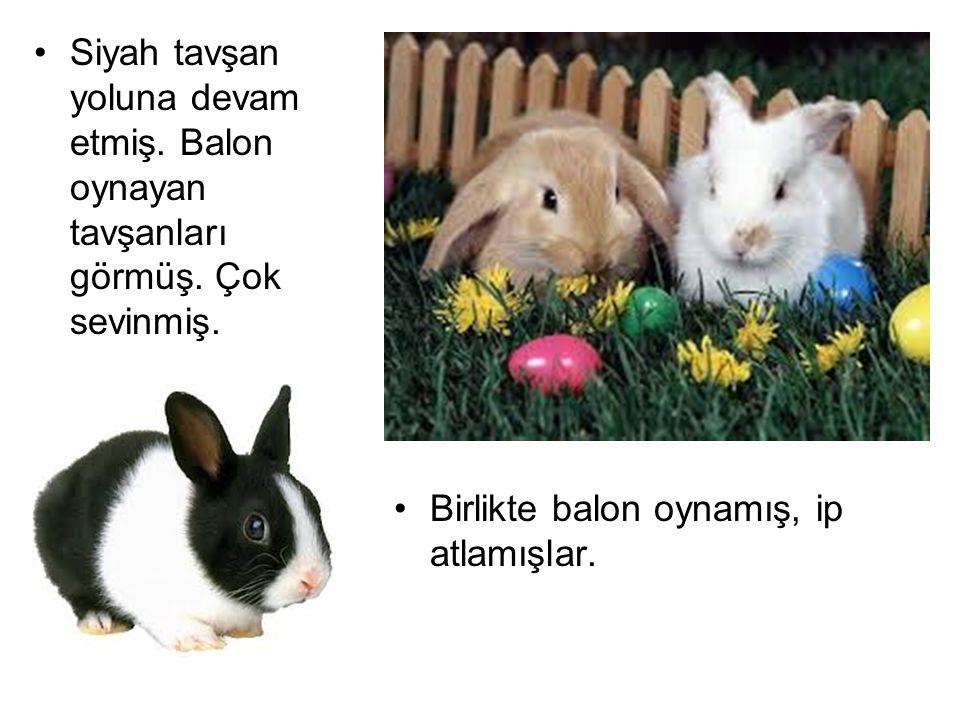 Siyah tavşan yoluna devam etmiş. Balon oynayan tavşanları görmüş. Çok sevinmiş. Birlikte balon oynamış, ip atlamışlar.
