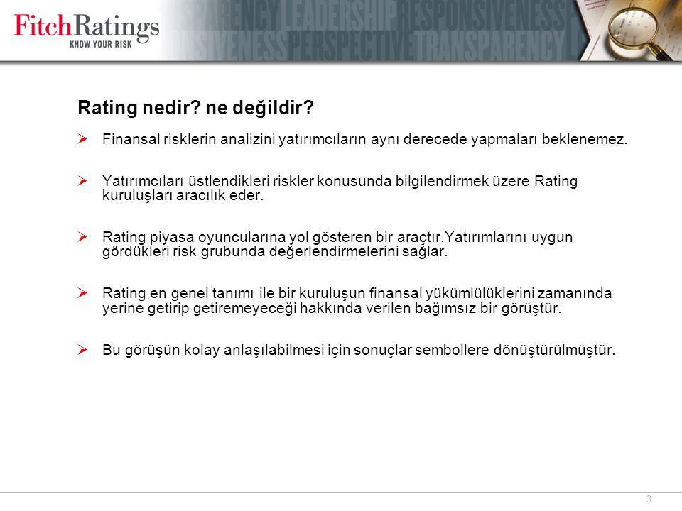 4 Fitch Rating'leri Nedir ?Ne Değildir.