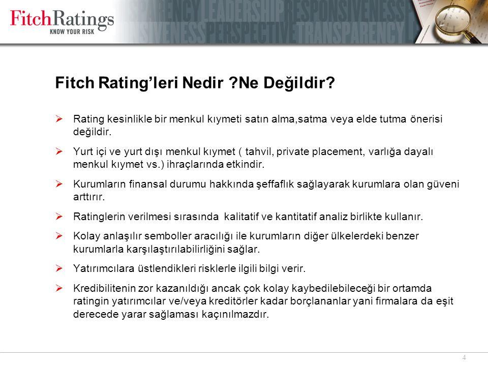 4 Fitch Rating'leri Nedir ?Ne Değildir?  Rating kesinlikle bir menkul kıymeti satın alma,satma veya elde tutma önerisi değildir.  Yurt içi ve yurt d
