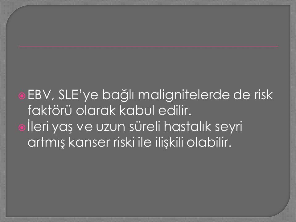  EBV, SLE'ye bağlı malignitelerde de risk faktörü olarak kabul edilir.  İleri yaş ve uzun süreli hastalık seyri artmış kanser riski ile ilişkili ola