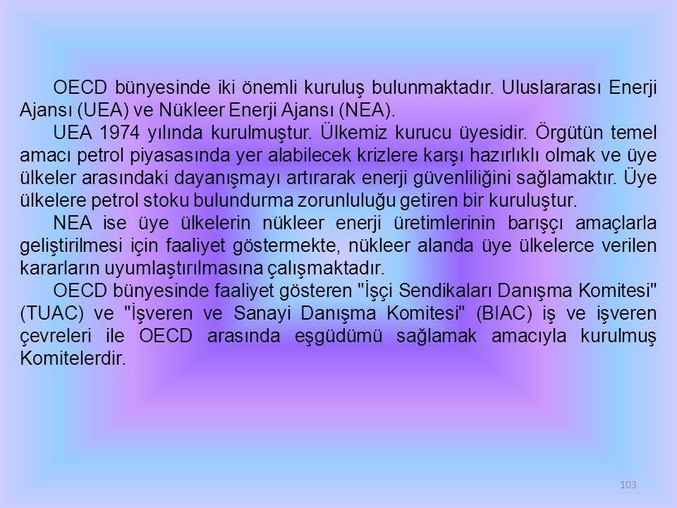 103 OECD bünyesinde iki önemli kuruluş bulunmaktadır.