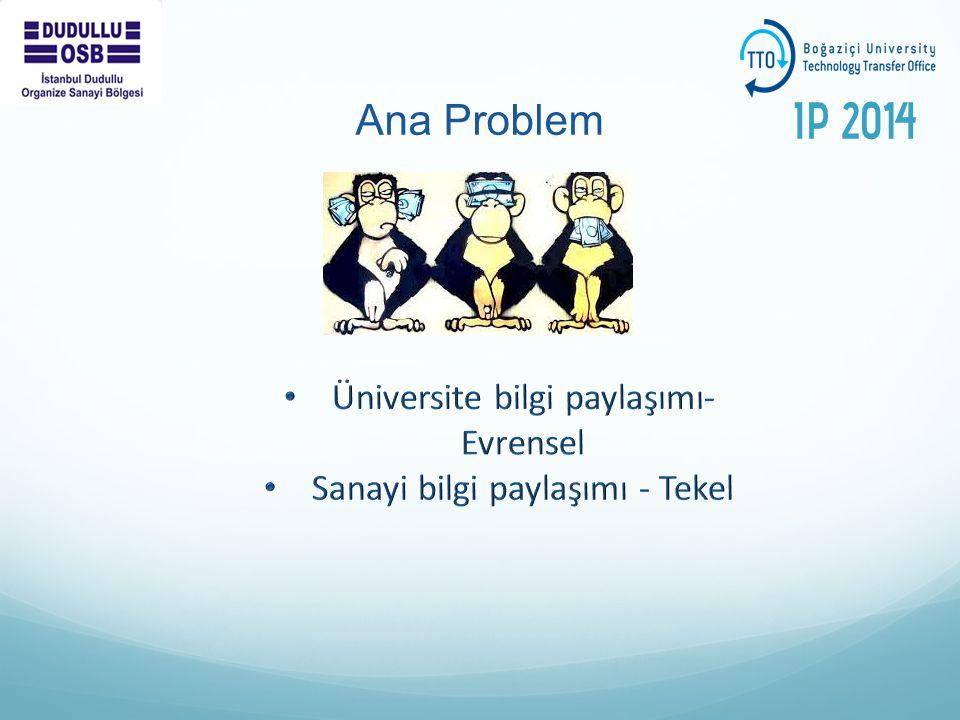 Ana Problem