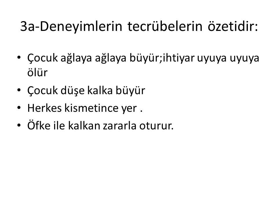 3-Atasözlerimizin anlamları bakımından çeşitleri Anlam bakımından çok zengindir Türkün yaşamını anlatır Her hadiseye konu olur Her Türk atasözü bilir