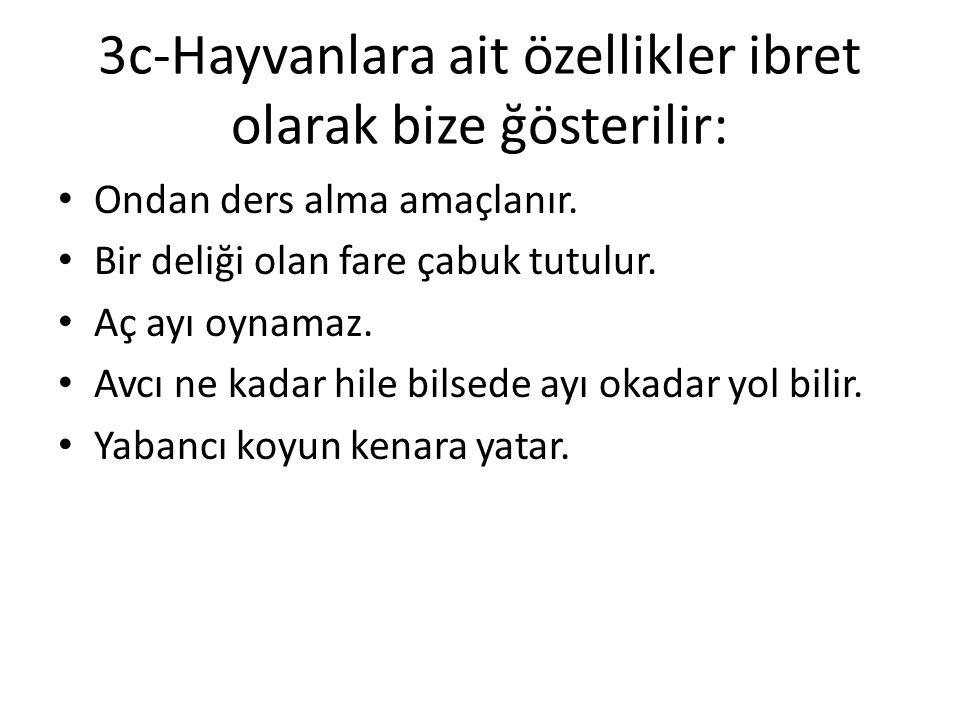 3b-Geçinme töresi ile alakalı olanlar: Bazı Türkler utangaçtır. İstedediğini bir anda söyleyemez. Ağlamayan çocuğa meme vermezler. Sona kalan dona kal