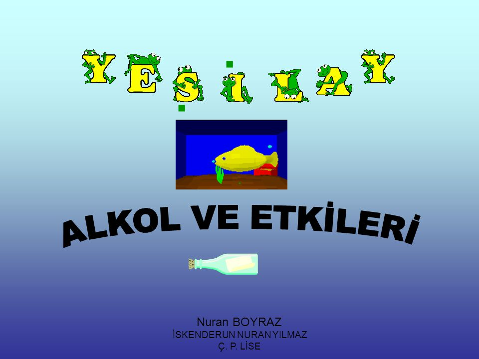 İSKENDERUN NURAN YILMAZ Ç. P. LİSE... Nuran BOYRAZ
