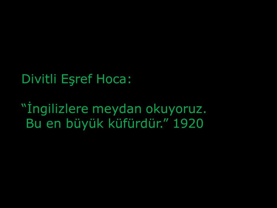 Şeyhülislam Mustafa Sabri Efendi: Benim elimden gelse, Türkleri Arap yaparım; Vaktiyle Araplaşmamış olmalarına da çok eseflenirim.