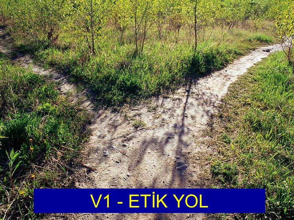 Kamu Görevlileri Etik Kurulu The Ethical Way V1 - ETİK YOL