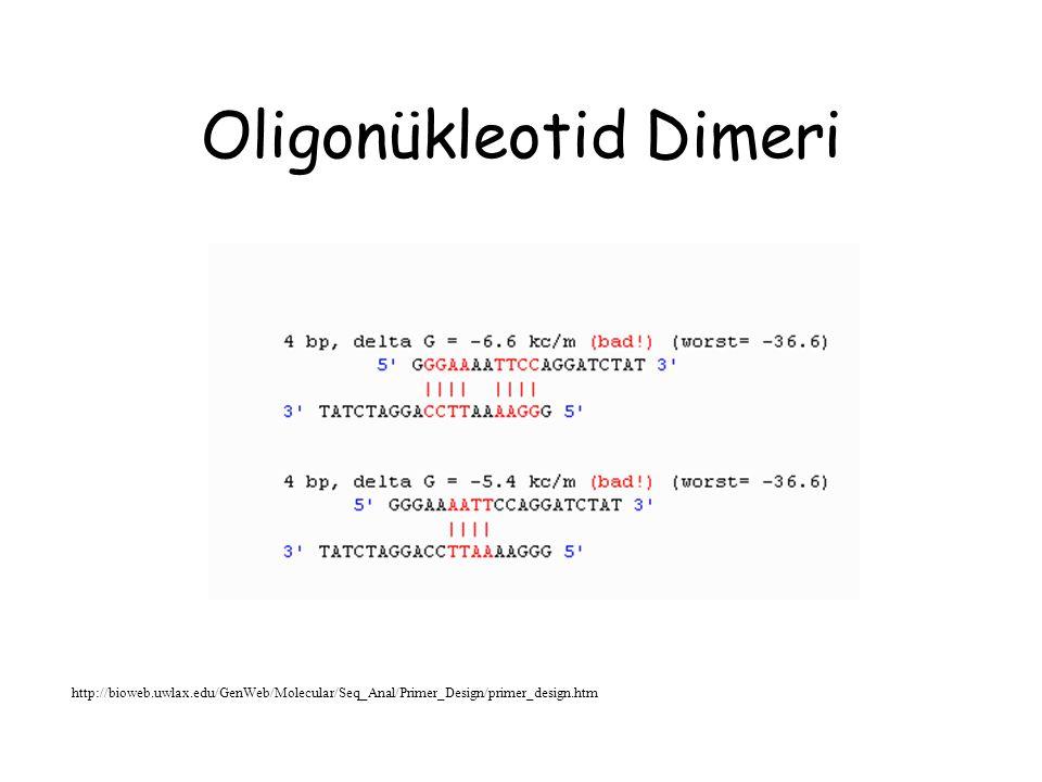 Dejenere Primer Tasarımı http://bioweb.uwlax.edu/GenWeb/Molecular/Seq_Anal/Primer_Design/primer_design.htm