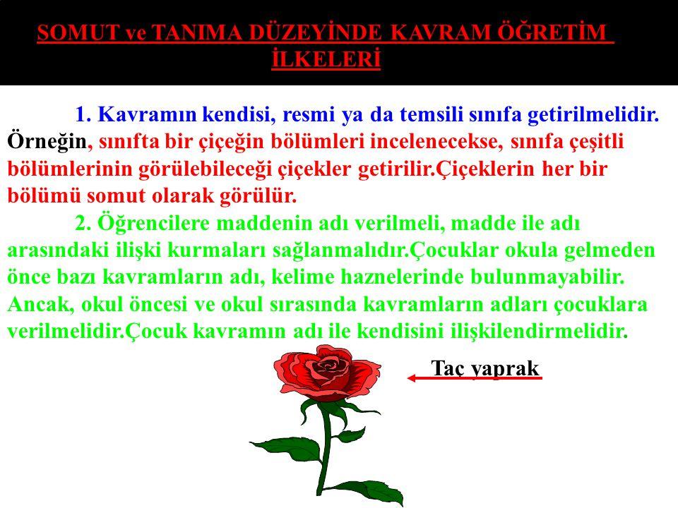 BU İLKELERİN UYGULANIŞ BASAMAKLARI ŞÖYLE OLMALIDIR 1.