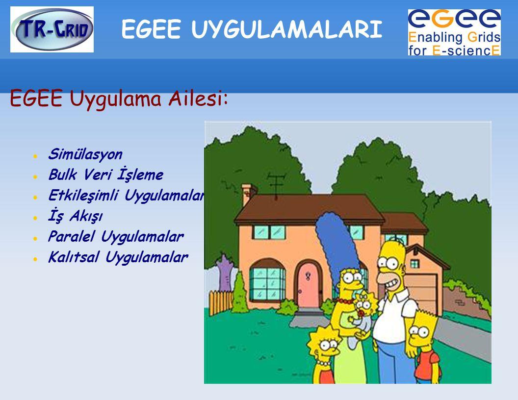 EGEE UYGULAMALARI EGEE Uygulama Ailesi: Simülasyon Bulk Veri İşleme Etkileşimli Uygulamalar İş Akışı Paralel Uygulamalar Kalıtsal Uygulamalar