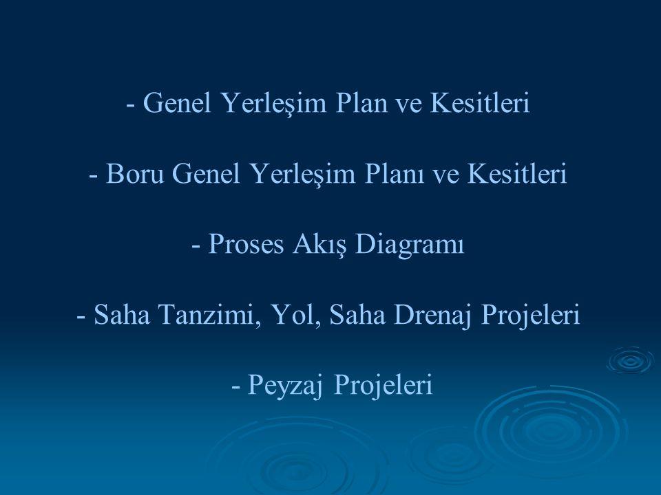 - Genel Yerleşim Plan ve Kesitleri - Boru Genel Yerleşim Planı ve Kesitleri - Proses Akış Diagramı - Saha Tanzimi, Yol, Saha Drenaj Projeleri - Peyzaj
