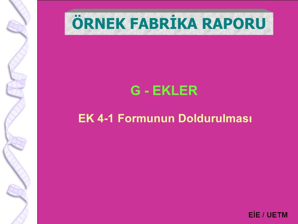 132 G - EKLER ÖRNEK FABRİKA RAPORU EİE / UETM EK 4-1 Formunun Doldurulması