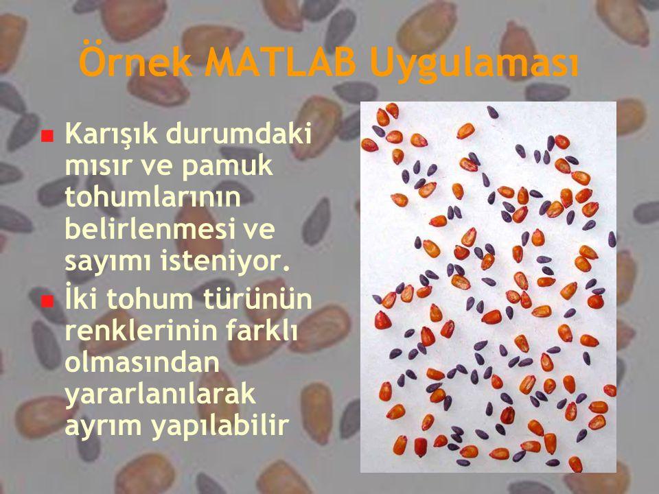 Örnek MATLAB Uygulaması Karışık durumdaki mısır ve pamuk tohumlarının belirlenmesi ve sayımı isteniyor. İki tohum türünün renklerinin farklı olmasında