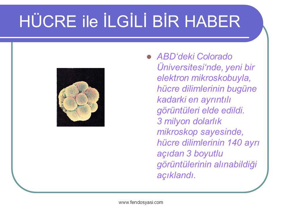 www.fendosyasi.com HÜCRE ile İLGİLİ BİR HABER ABD'deki Colorado Üniversitesi'nde, yeni bir elektron mikroskobuyla, hücre dilimlerinin bugüne kadarki en ayrıntılı görüntüleri elde edildi.