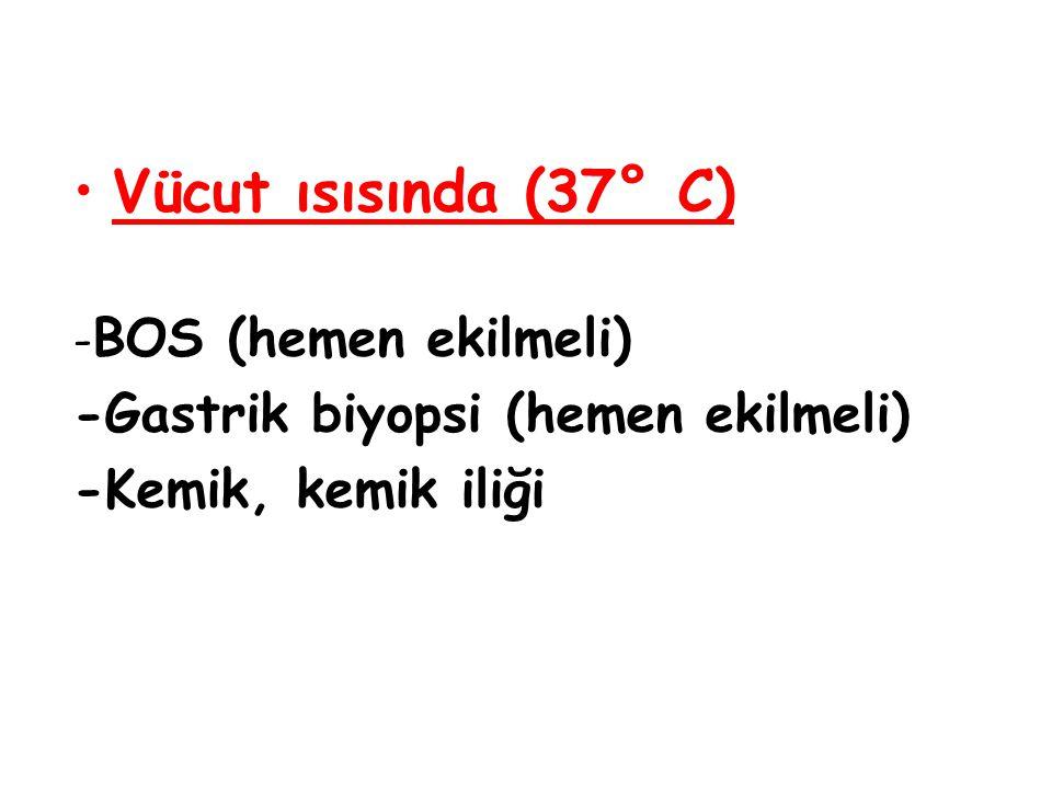 Vücut ısısında (37° C)  - BOS (hemen ekilmeli)  -Gastrik biyopsi (hemen ekilmeli)  -Kemik, kemik iliği