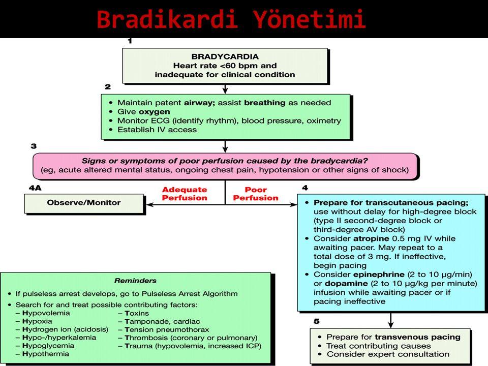 Bradikardi Yönetimi