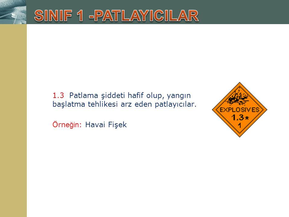 4.1 Alev alabilen ve kolay tutuşan katı maddeler; Örn eğin : Kırmızı Fosfor, Magnezyum, Proksilin plastikleri, Naftalin, Kükürt, ağaç tozu, kömür tozu, un, selüloit.