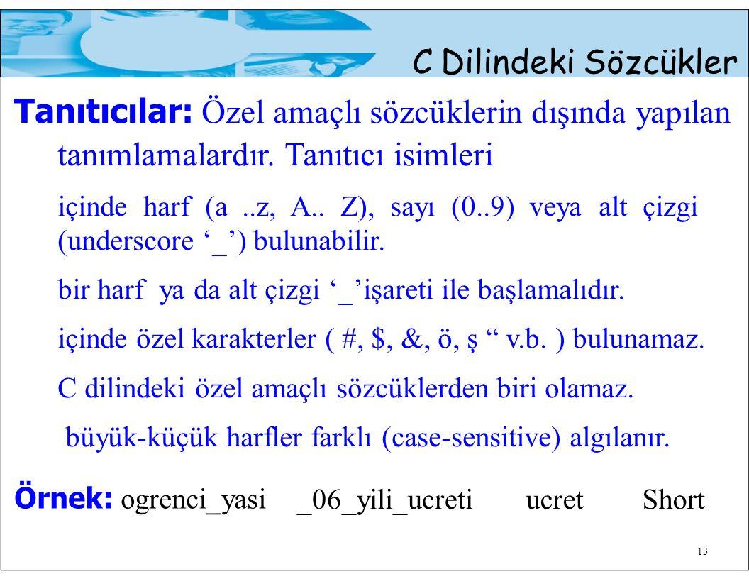 13 C Dilindeki Sözcükler Tanıtıcılar: Özel amaçlı sözcüklerin dışında yapılan tanımlamalardır.