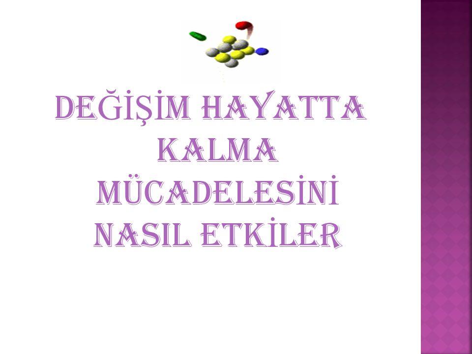 A Ş A Ğ IDAK İ RES İ MLER İ İ NCELEYEL İ M..